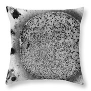 Oocyte, Lm Throw Pillow