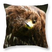 Oops I Have Gone Mad Throw Pillow