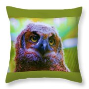 Opalescent Owl Throw Pillow