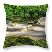 Oparara River Throw Pillow