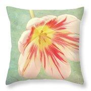 Open Bi-coloured Tulip Throw Pillow