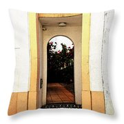 Open Doorway Throw Pillow