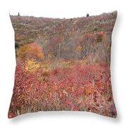 Open Field View Throw Pillow