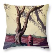 Open Hydrant Throw Pillow