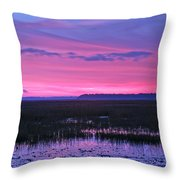 Open Marsh Throw Pillow
