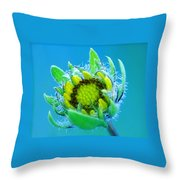 Open Mind And Open Heart Throw Pillow