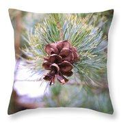 Open Pine Cone Throw Pillow