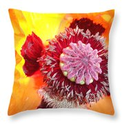 Open Poppy Throw Pillow