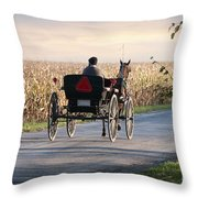 Open Road Open Buggy Throw Pillow by David Arment