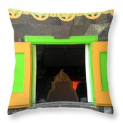 Open Window Throw Pillow