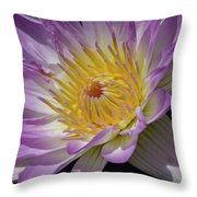 Opened Throw Pillow