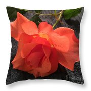Opened Rose  Throw Pillow