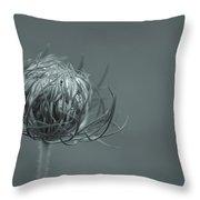 Opening Of Lace Throw Pillow