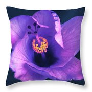 Opening Purple Hibiscus  Throw Pillow