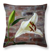 Opening White Lily Throw Pillow
