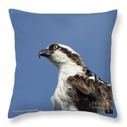 Opsrey Portrait Throw Pillow