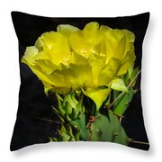 Opuntia Robusta Flower Throw Pillow