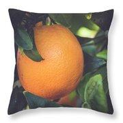 Orange #3 Throw Pillow