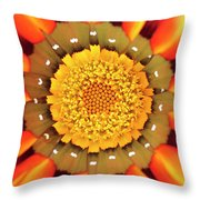 Orange African Daisy Throw Pillow