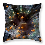 Orange And Black Anemone, Komodo Throw Pillow