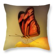 Orange And Black Butterfly Sitting On The Yellow Petal Throw Pillow