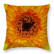 Orange And Black Gerber Center Throw Pillow