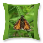 Orange And Brown Moth Throw Pillow