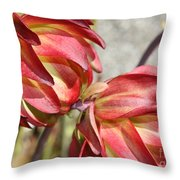 Orange And Light Green Flowers Throw Pillow