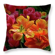 Orange And Red Tulip Lilies In Various Stages Of Bloom Throw Pillow