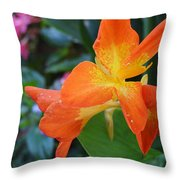 Orange And Yellow Canna Lily 2  Throw Pillow