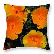Orange And Yellow Flowers Throw Pillow