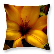 Orange And Yellow Lily Throw Pillow