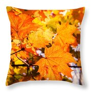 Fall Of Orange Leaves Throw Pillow