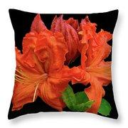 Orange Azalea Throw Pillow