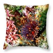 Orange Ball Corallimorph Anemone Throw Pillow