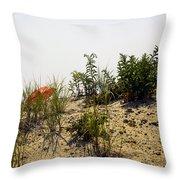Orange Beach Umbrella  Throw Pillow