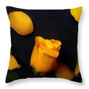 Orange Beauty 2 Throw Pillow