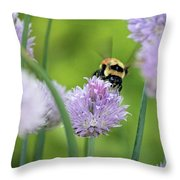 Orange-belted Bumblebee On Chive Blossoms Throw Pillow