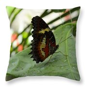 Orange Black Butterfly Throw Pillow