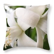Orange Blossoms #4 Throw Pillow