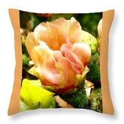Orange Cactus Blossom Throw Pillow