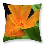 Orange California Poppies Throw Pillow