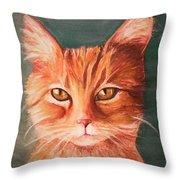 Orange Cat Throw Pillow