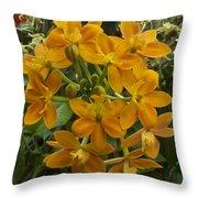 Orange Cluster Throw Pillow