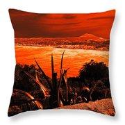 Orange Coast Throw Pillow