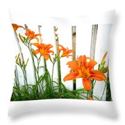 Orange Daylily At Colonial Williamsburg Throw Pillow
