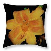 Orange Daylily Flower Blossom In A Garden Throw Pillow
