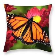 Orange Drift Monarch Butterfly Throw Pillow