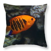 Orange Fish Throw Pillow