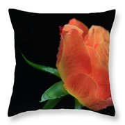 Orange Flame Rose Throw Pillow by Tracy Hall